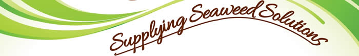 Supplying seaweed solutions